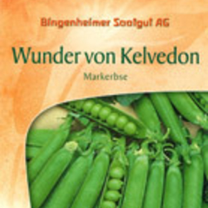 Product_wundervonkelvedon_gross