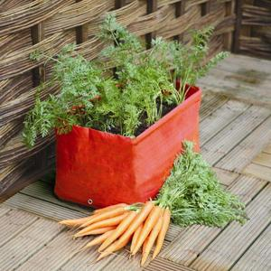 Product_20335_carrot_patio_planter